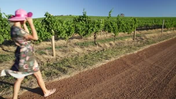 Vinice vinařství Turistika