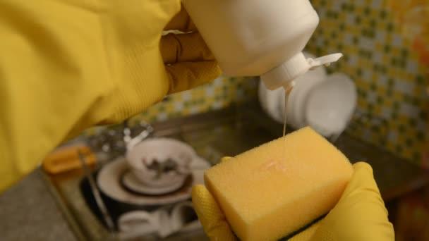 Houba na mytí nádobí a rukavice.