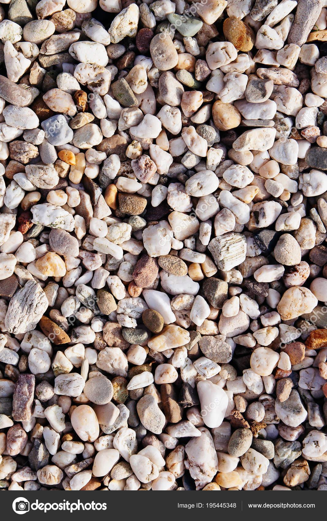 Multi Colored Light Sunset Granite White Pebble Stones Texture Background  Sea Shore Beach Summer Garden