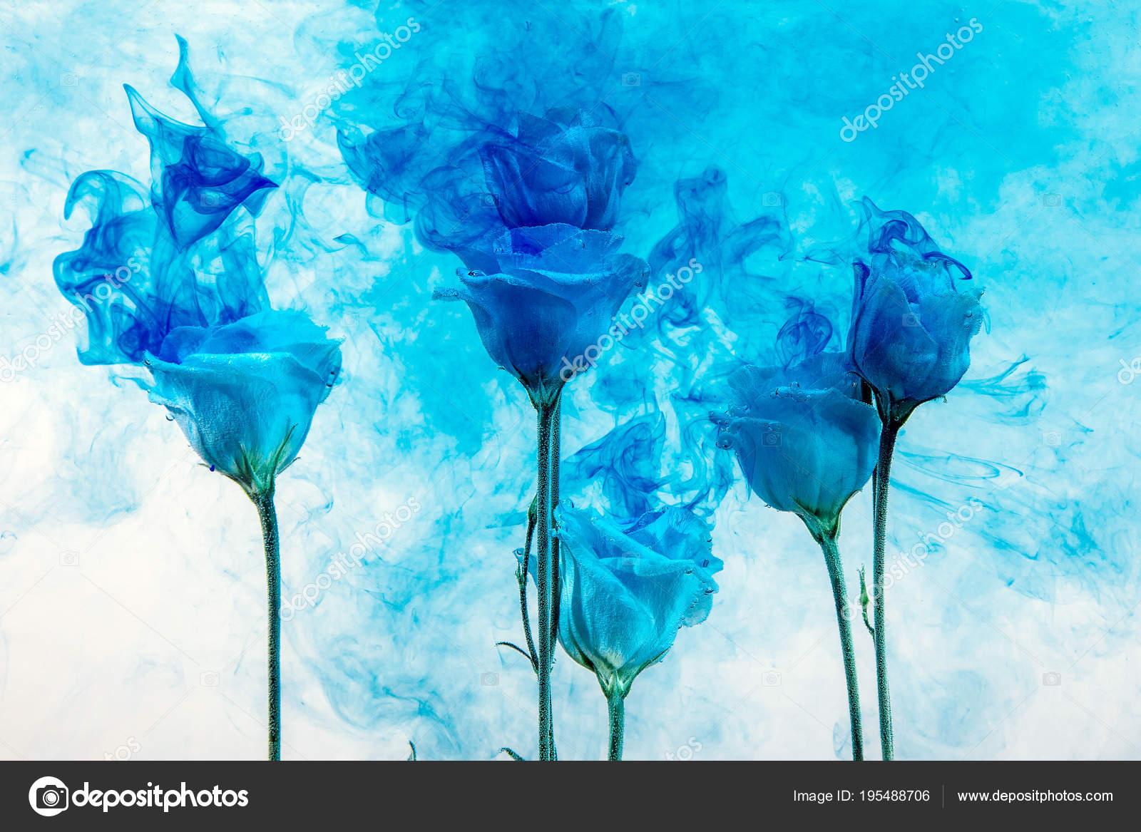 Fond De Leau Bleu Fleur Blanche à Lintérieur Sous La Peinture