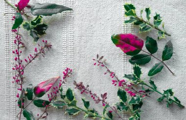 Christmas festive table New Year white pink red green berry cornel dogwood branch canvas background copy space