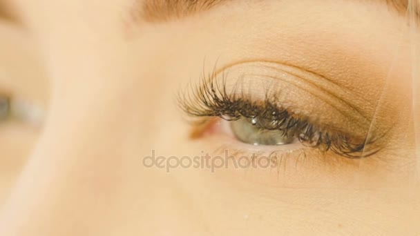 Profesionální oční makeup umělec použití eyeshadow powder. Krásná žena tvář. Dokonalý make-up. Módní krása. Řasy. Zblízka a zpomaleně