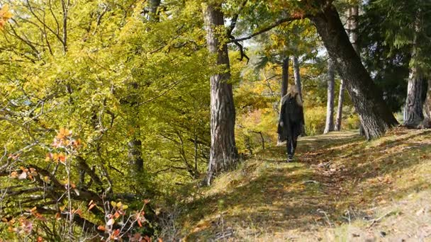 Woman traveler is walking through the mountains and forests