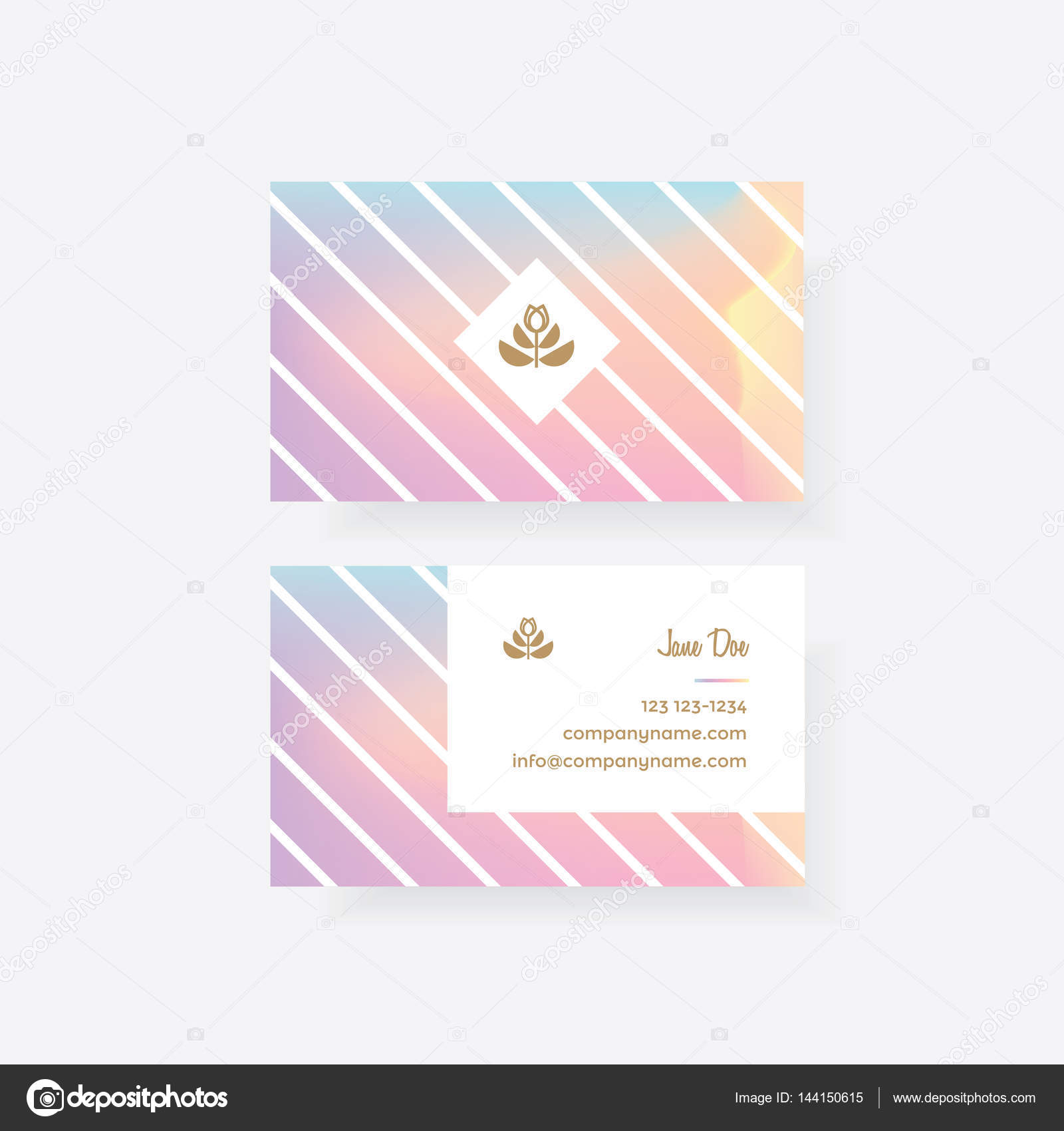 Feminine business card — Stock Vector © DianaHlevnjak #144150615