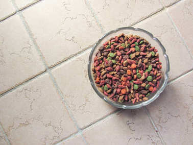 pet food insiede a glass cup on the floor