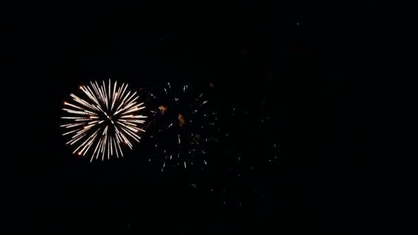 rekreační ohňostroj na noční obloze