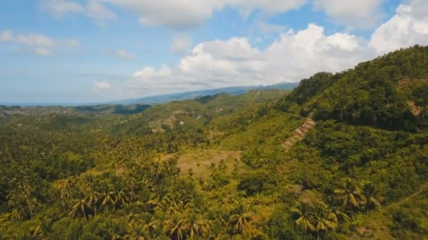 Mountains with tropical forest. Philippines Cebu island.