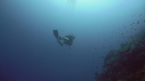 Scuba Diver underwate.