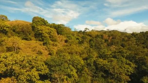 Hory s tropickým lesem. Filipíny Siargao island