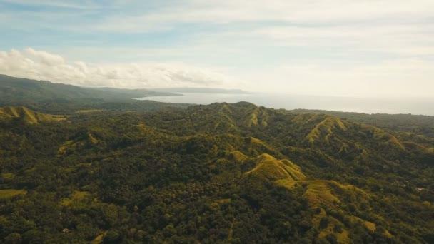 Montagne con la foresta tropicale. Filippine Siargao island.