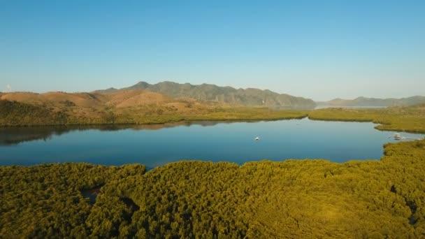 Tropická krajina, hory, Les, bay. Busuanga, Palawan, Filipíny