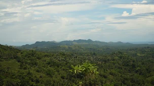 Hory s tropickým lesem. Filipíny Bohol island.