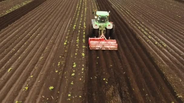 Tractor cultivates the land in the field.