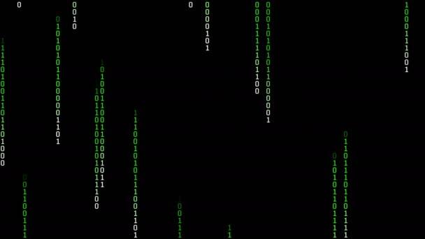Binary Matrix Rain