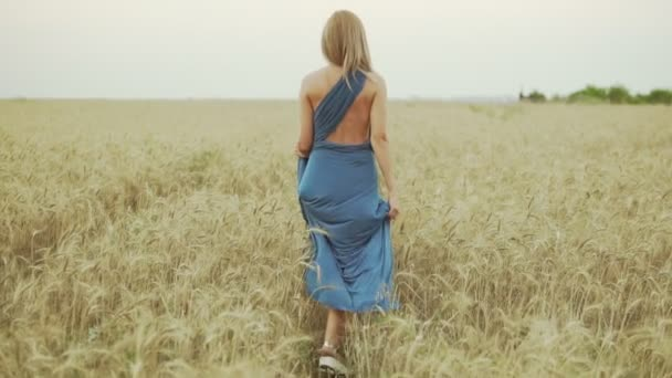 Back view of unrecognizable woman with blonde hair in long blue dress walking through golden wheat field. Freedom concept. Slowmotion shot