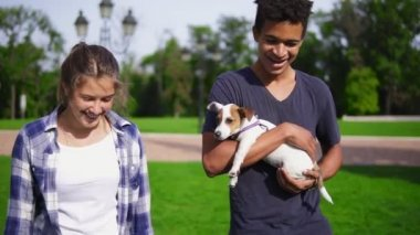 Two multiracial friends walking in park enjoying the summerday. Young attractive african guy is holding cute little jack russell terrier and smiling. Happy summer time