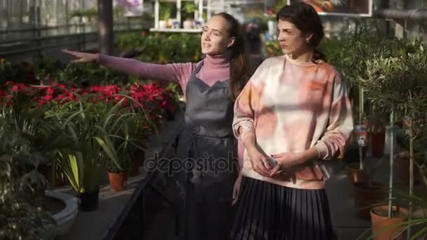 Young smiling female florist walking with her boss and showing her different plants, explaining information. Young woman is listening carefully to the florist