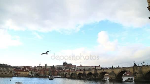 Karlův most a Pražský hrad