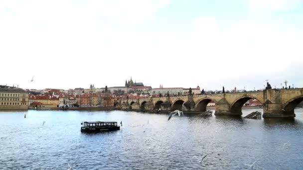 Karlův most a vltava river v Praze