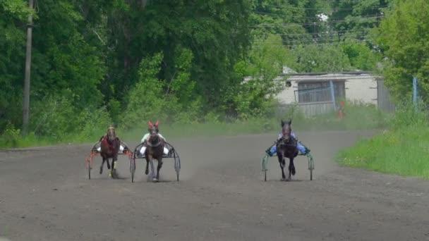 Jezdci se připravují na soutěž na jízdu na nožičky. Jezdci kontrolovat pohyb koně zapřáhli do sportovních kočárků. Koně běžet klusem. Slunečný letní den na závodní dráze.