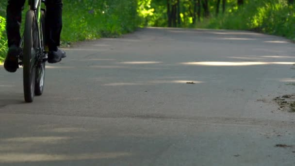 SLOW  MOTION: Cyclists ride along the asphalt path in the park. They enjoy the ride and the fresh air of the park.