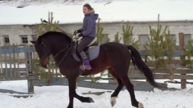 SLOW MOTION: A girl jockey fulfills riding on a horse. It performs a variety of sports movement and jumping. Training takes place in a small special paddock. A cloudy winter day