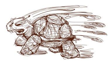 Turtle, hand drawn sketch