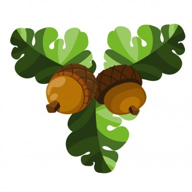 Two acorns with oak leaves.
