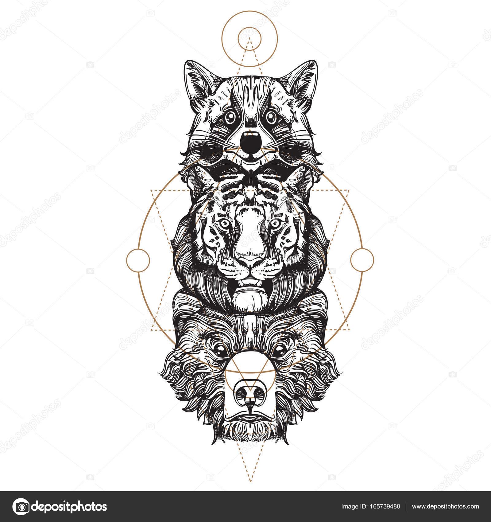 Dibujos Bocetos De Osos Mapache Tigre Y Oso Totem