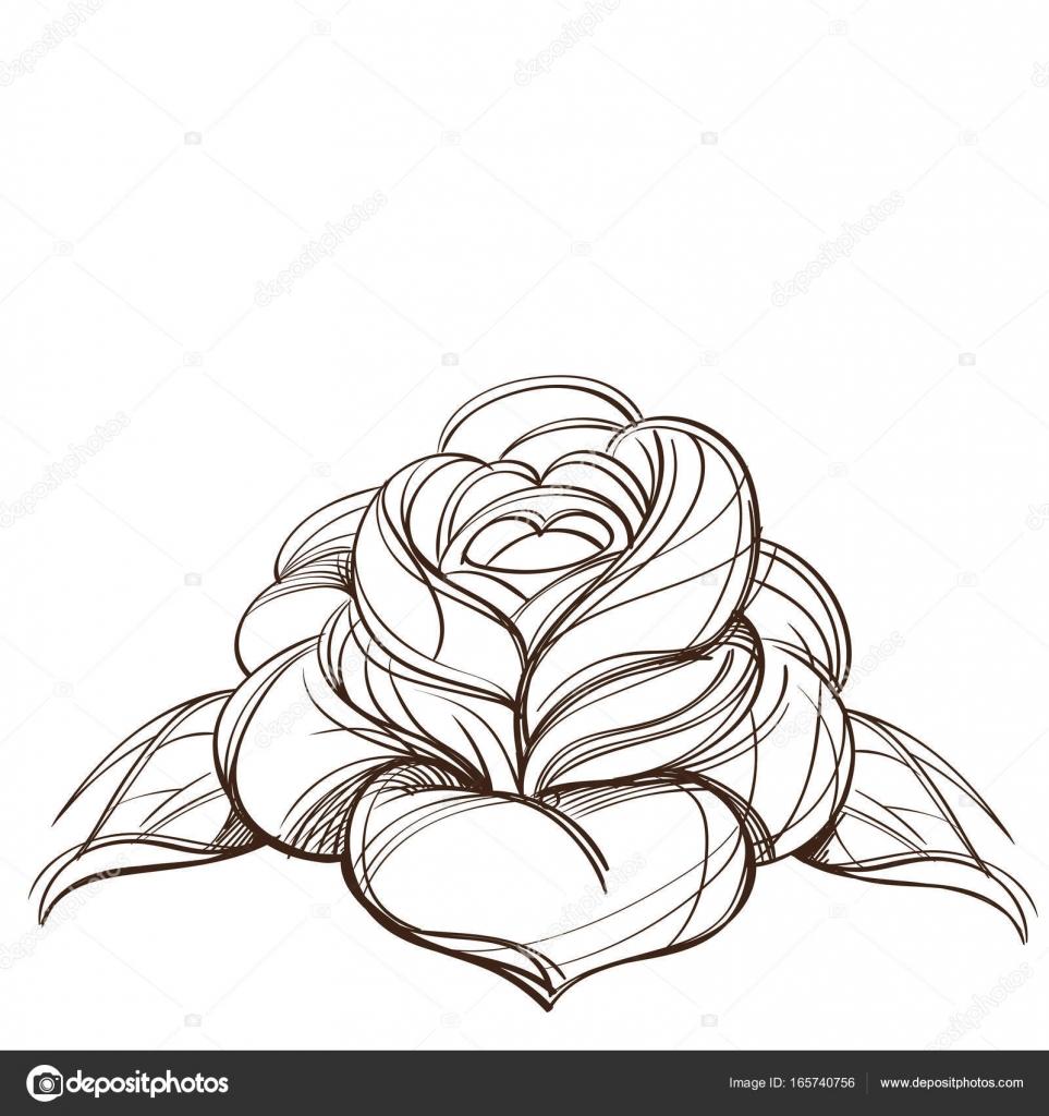 Diseño De Rosa Para Tatuaje Elemento De Diseño Rosa Dibujado En