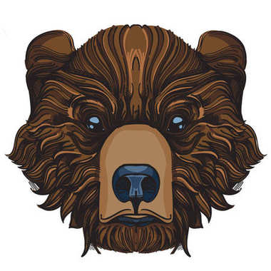 Muzzle bear illustration