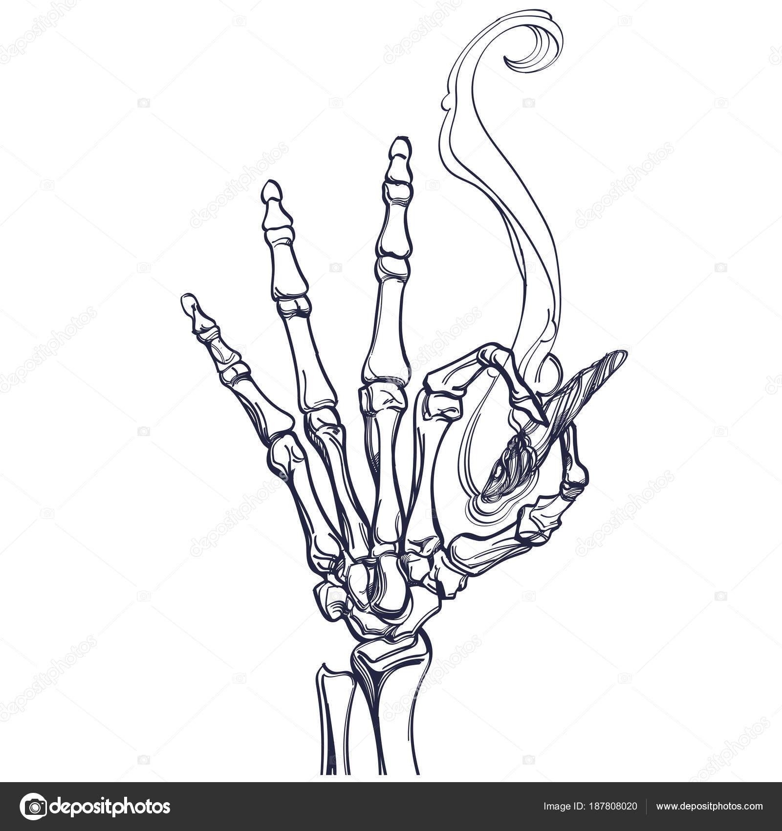 Mano Esqueleto Vector Con Empalme Marihuana Ilustración Aislado ...