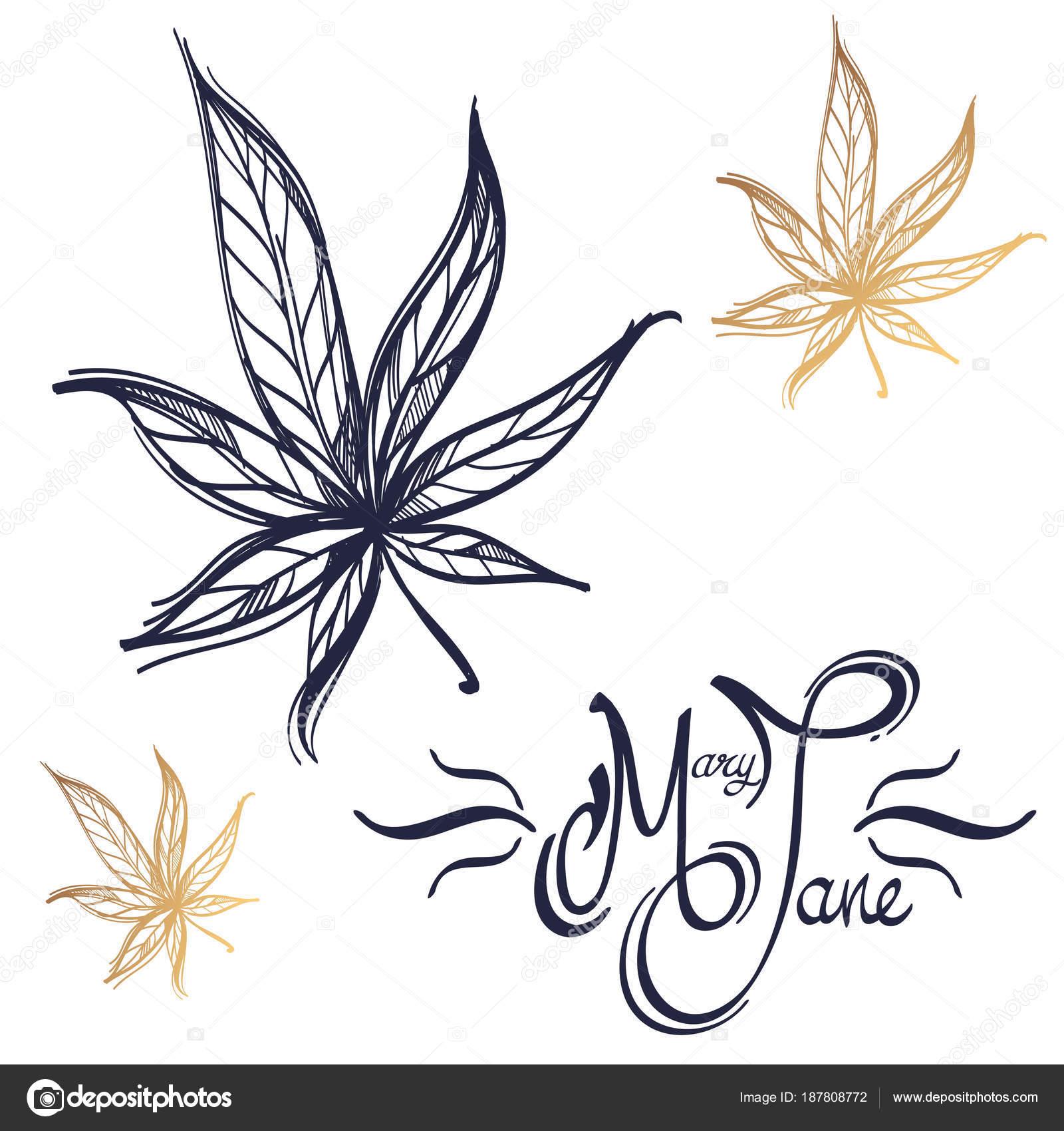 Imágenes Hoja De Marihuana Para Colorear Hoja Marihuana