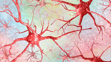 Horizontal 3d illustration of red neurons on a colored backgroun
