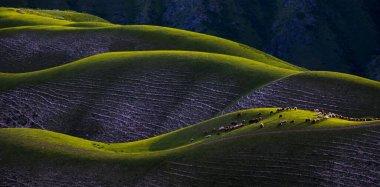 """Картина, постер, плакат, фотообои """"красивый пейзаж с зеленым полем картины природа"""", артикул 465331536"""