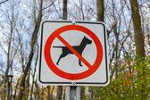Žádný pobyt se psem v lese, Montreal, Kanada