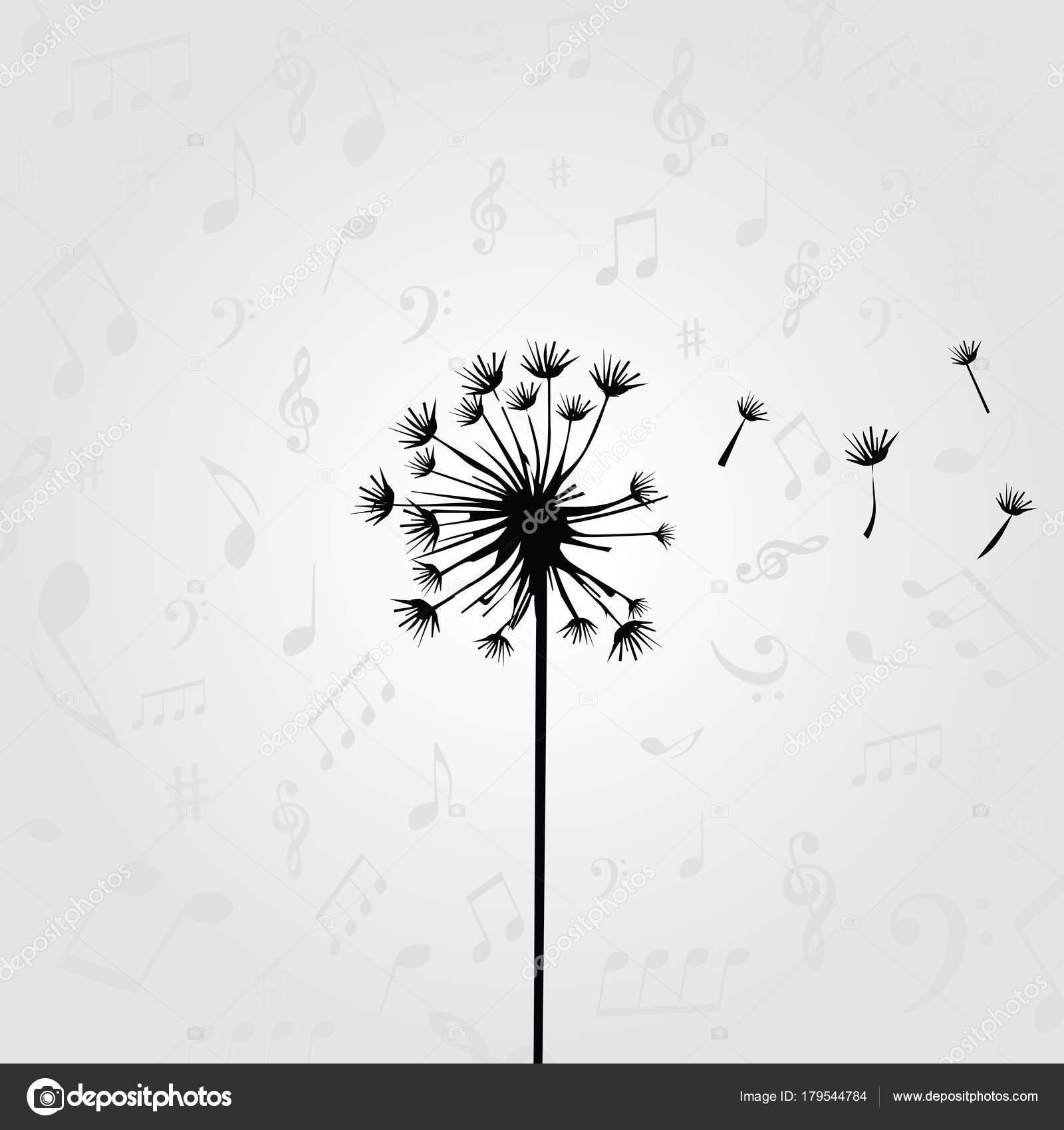 black white dandelion music notes musical template stock vector
