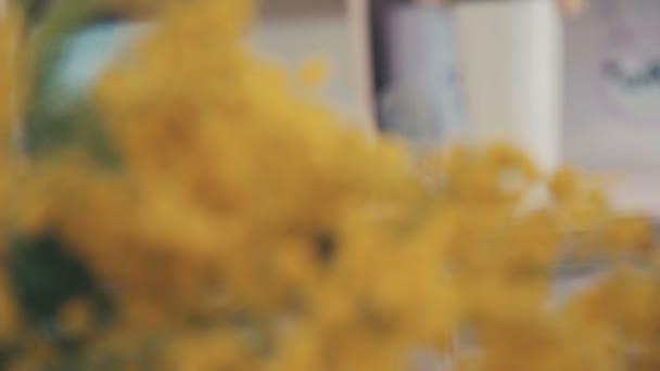 Közeli kép: ágai sárga mimosa. Tavaszi virágok. Virágüzlet