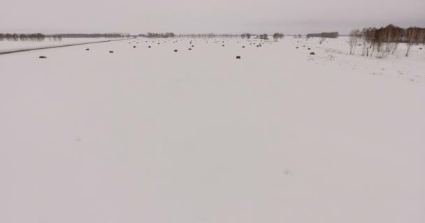 Sibiř, antény: odlehlé silnici, zasněženou plání s stohy