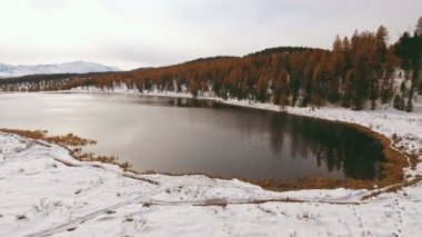 Unfrozen lake, surrounded by the first fallen snow, yellow trees