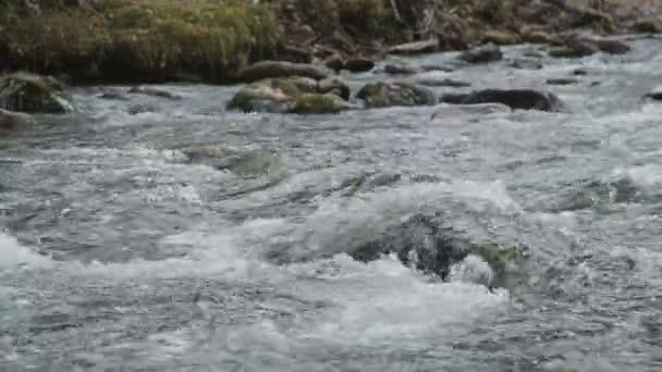 Detail: tok vody a skalní peřeje, horská řeka