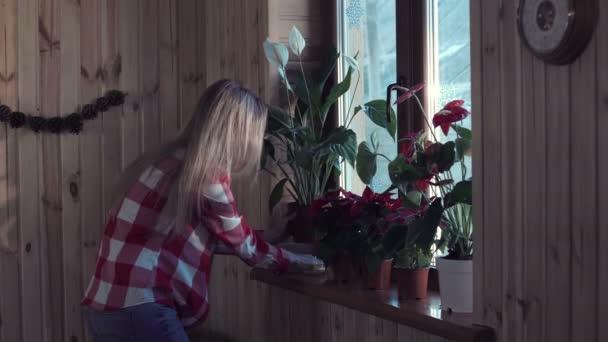 Mladá žena květiny na parapet