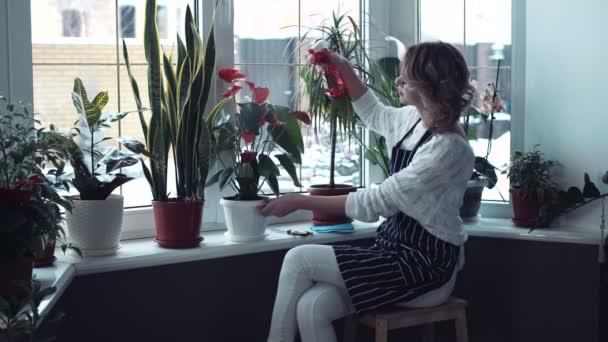 Ženské stříkat video