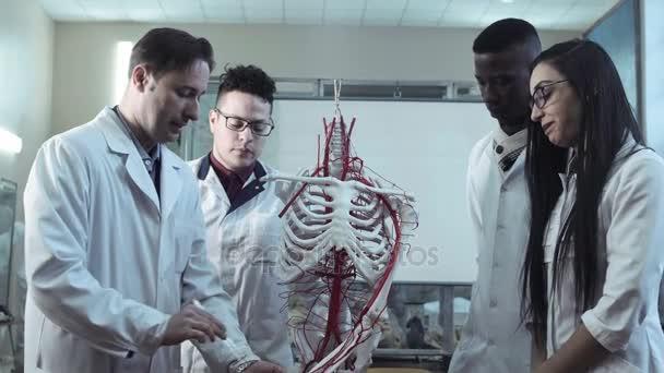 Grupo de estudiantes de medicina en una lección de anatomía — Vídeos ...