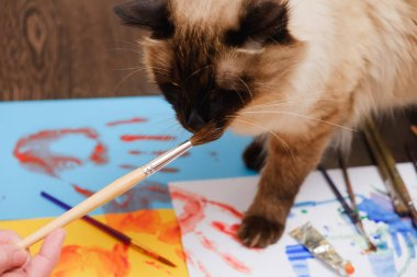 """Картина, постер, плакат, фотообои """"Краски художника щетки на деревянных фоне, ремесло художественный процесс"""", артикул 187203570"""