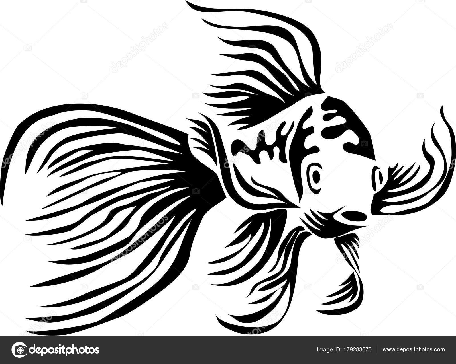 Butterfly Carp Butterfly Koi Fish Stylized Black White Vector Illustration Stock Vector C Bokononist 179283670