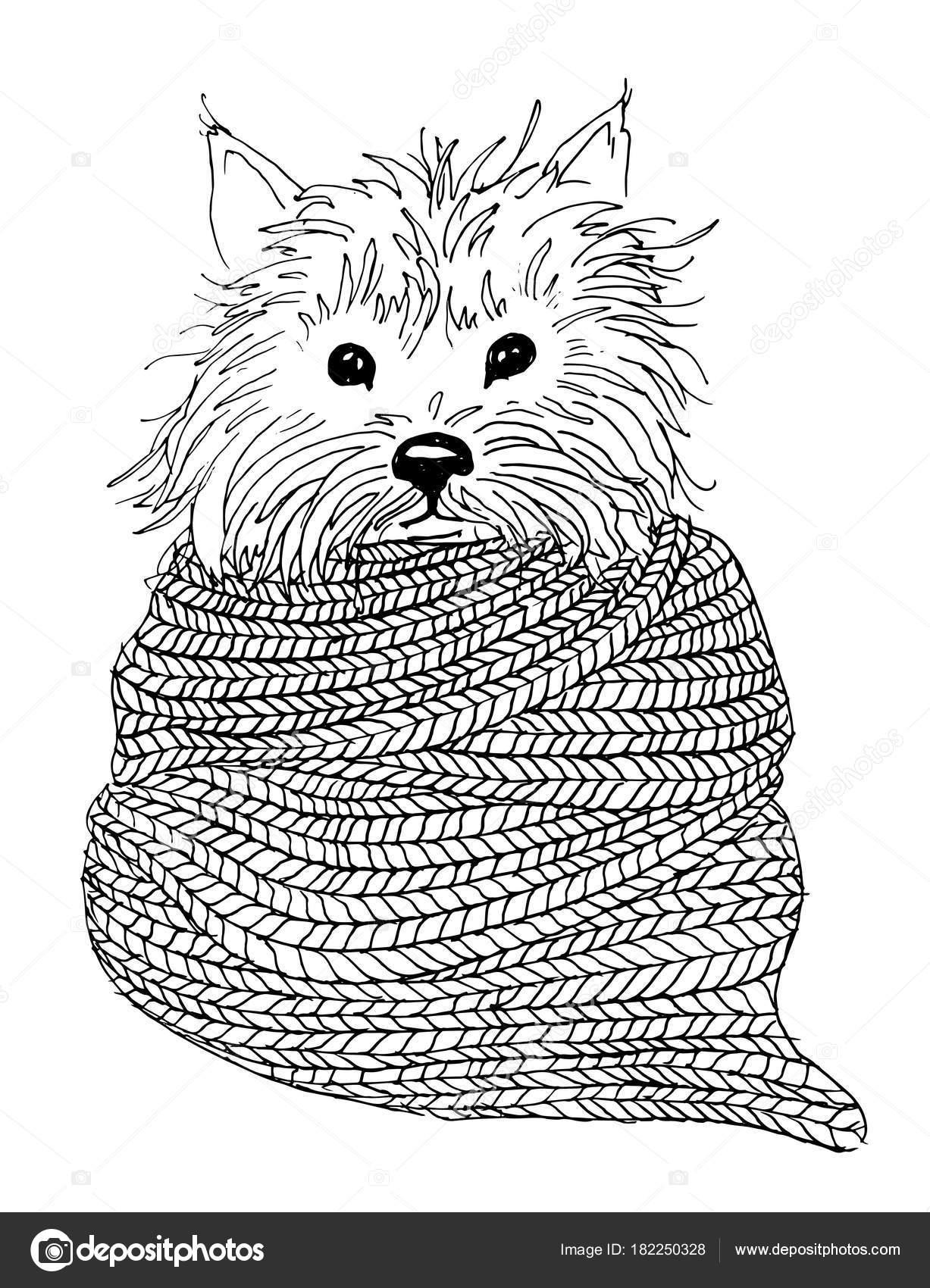 Ilustración de vector para colorear libro. Retrato de perro con ...