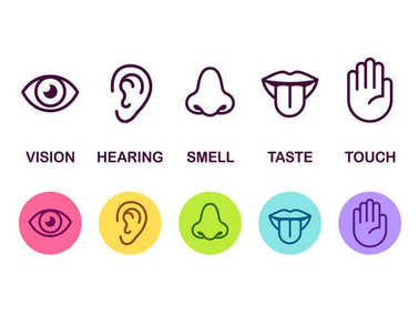 Senses icon set