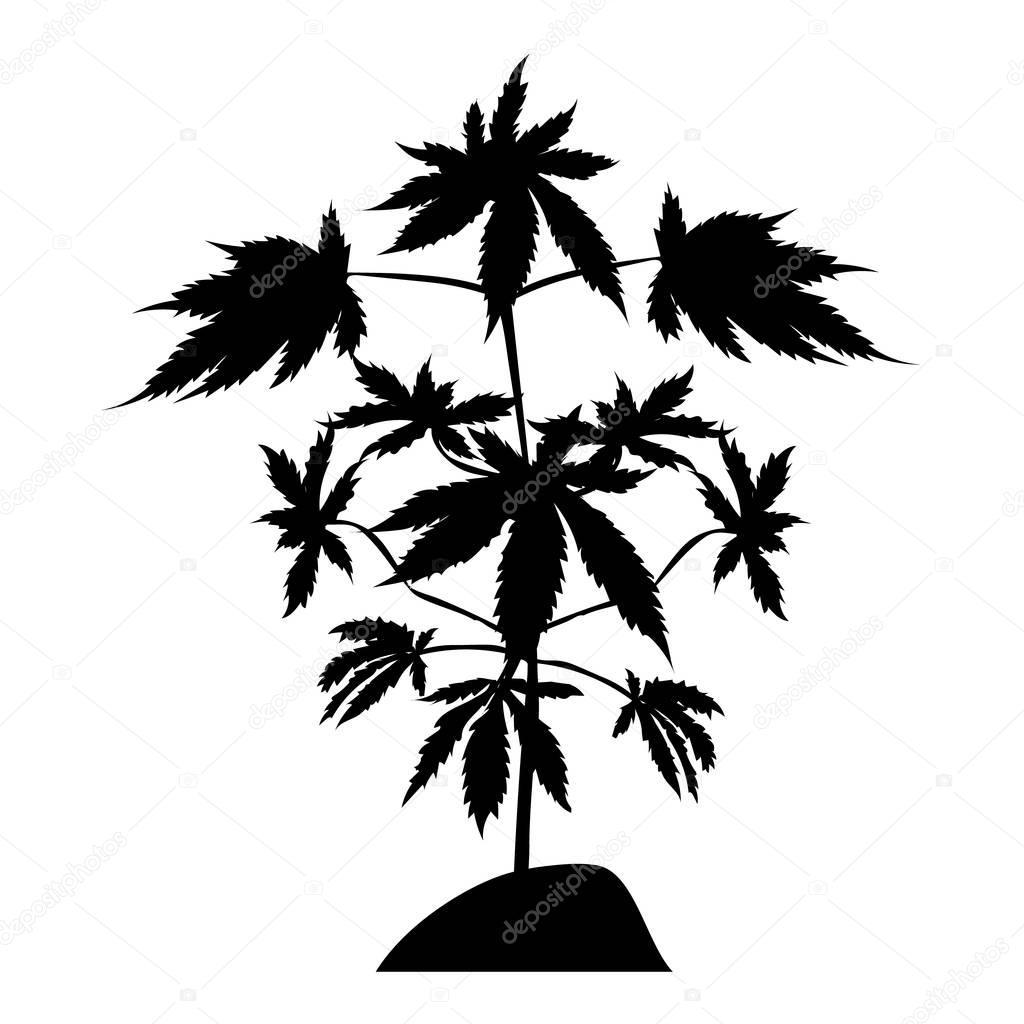marijuana plant silhouette
