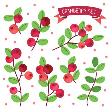 Ripe cranberries set